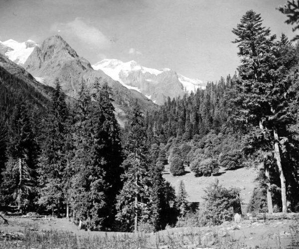 Домбайская поляна 1930